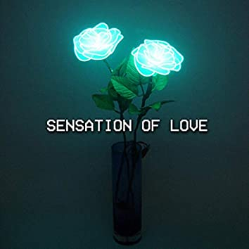 Sensation Of Love (Radio Edit)