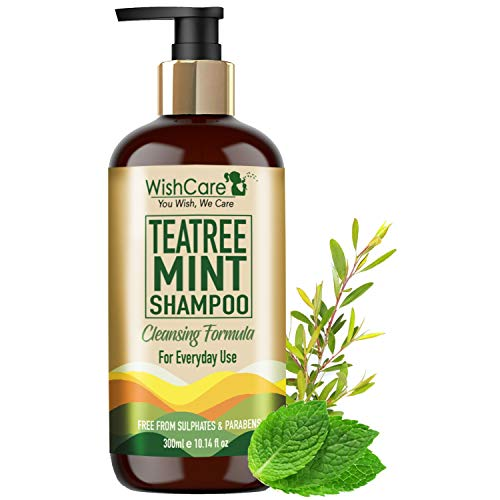 WishCare® Tea Tree Mint Shampoo - Cleansing Formula - Free from Mineral Oils, Sulphates & Parabens - For All Hair Types - 300 Ml