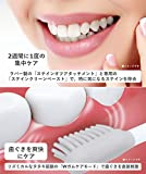 パナソニック 電動歯ブラシ ドルツ ピンク EW-DP53-P