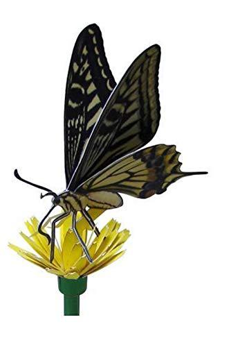 Amanigo Papilio Origami artesanía artesanía artesanía Insecto Papel Modelo 3D Cubo Papel Molde Hecho a Mano Bricolaje Kindergarten Origami Actividades de la Familia Sorpresa Regalo de cumpleaños