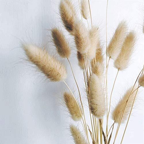50 stuks natuurlijke gedroogde bloemen bont konijnenstuk gras voor hoofdbruiloft decoratie echt boeket bloemen NO VASE