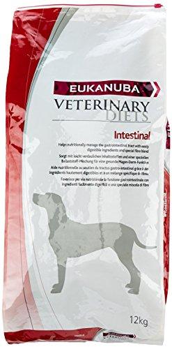 Eukanuba Veterinary Diets Adulto Intestinal [12 kg] 🔥