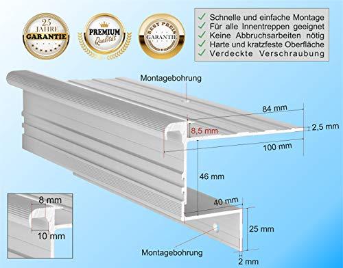 RenoProfil 100 cm Treppenprofil STABIL 8,5 für Laminat und Vinyl - Treppenkantenprofil für Treppenverkleidung und Treppenrenovierung - Farbe: Silber-Natur