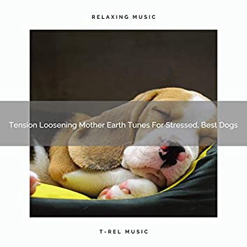 Tension Loosening Mother Earth Tunes For Stressed, Best Dogs
