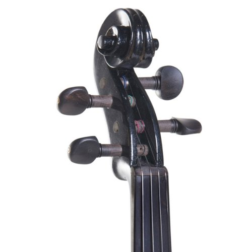 Cecilio CEVN-2BK Style 2 Silent Electric Solid Wood Violin with Ebony...