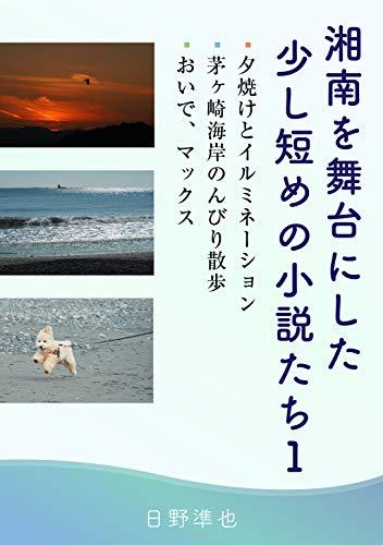湘南を舞台にした少し短めの小説たち-1 ( 夕焼けとイルミネーション / 茅ケ崎海岸のんびり散歩 / おいで、マックス)