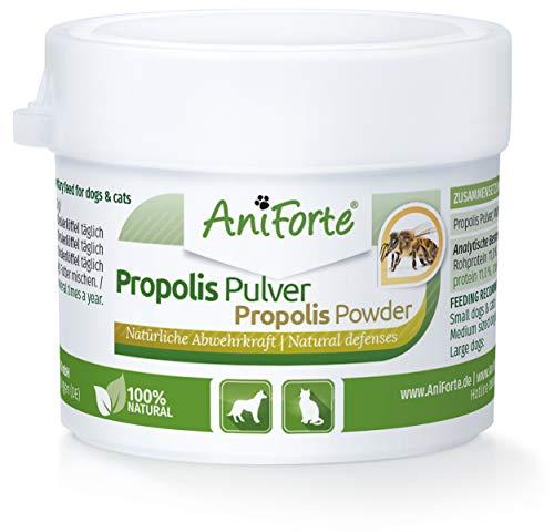 AniForte Propolis Pulver für Hunde & Katzen 20g - Natürliche Unterstützung Immunsystem & Vitale Haut durch Kraft der Natur. Hochwertiges Propolispulver stärkt die Abwehrkraft