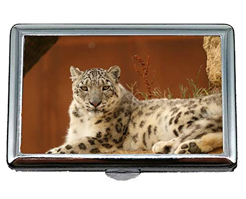 Cigarette Case Holder,Leopard Snow Leopard Zoo Yellow Brown Stainless Steel Card Holder Card Case Excellent Design for Men and Women