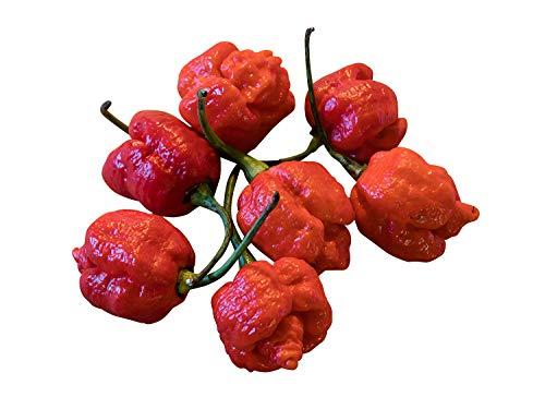 Liveseeds - Chili Carolina Reaper - Pepe più caldo del mondo - 10 semi