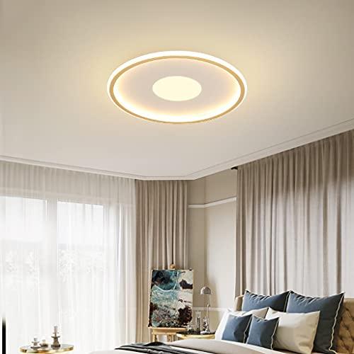 Redondo DIRIGIÓ Luz de Techo: lámpara de Techo cambiante 220V luz de Techo a Prueba de Techo para la Cocina del Pasillo de la Escalera de baño (Color : White, Size : 42W)