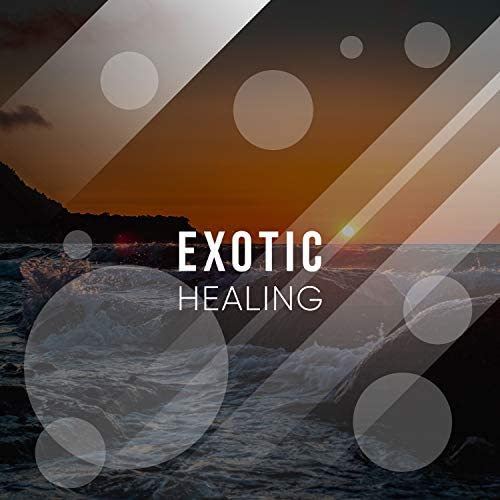 Focus Ambience & Healing Yoga Meditation Music Consort