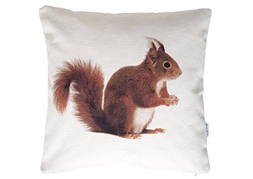 Eichhörnchen, Wendekissen, 40x40 cm Hülle, Baumwolle, Tier Motiv, Deko, Sofa, Garten