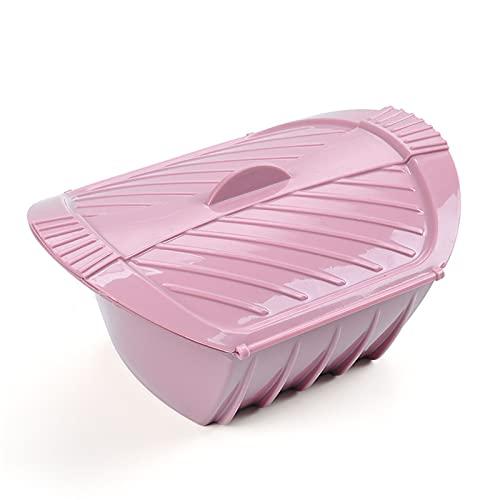 DUBENS Recipiente de silicona para pescado vaporizado, para microondas, horno, con tapa, color rosa (24,5 x 19 x 11 cm)