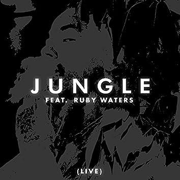 JUNGLE (LIVE)