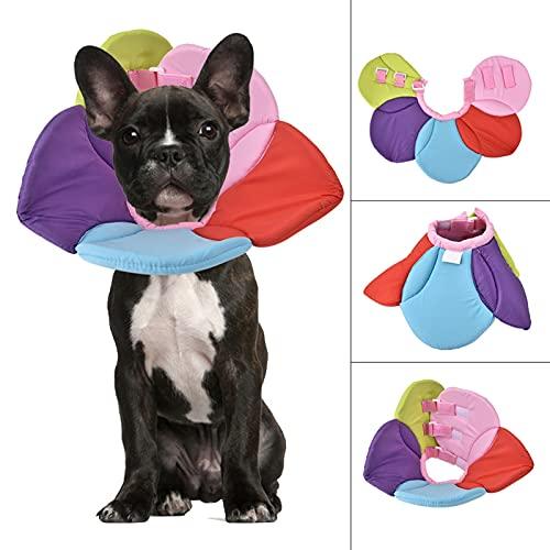 needlid Collar de Anillo Anti-mordida para Mascotas fácil de Usar, Collar de recuperación de Mascotas, Colorido para Perros y Gatos(Seven Colors, XL)