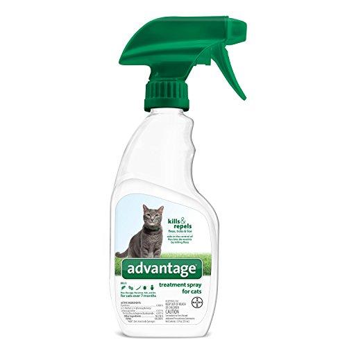 yard Spray for fleas