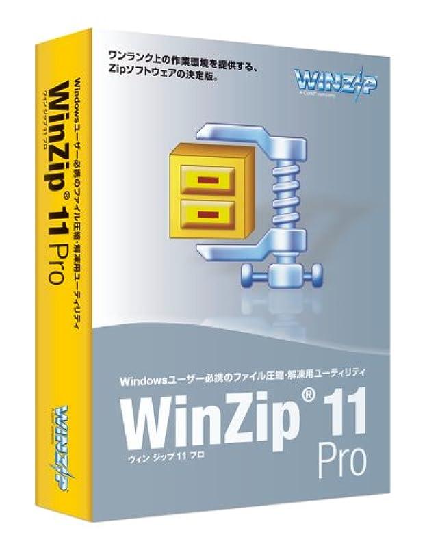 雄弁な充実アーカイブWinZip 11 Pro