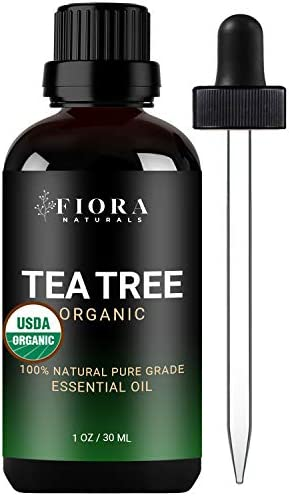 Tea Tree Essential Oil by Fiora Naturals 100 Pure Organic Tea Tree Oil for Face Hair Skin Acne product image