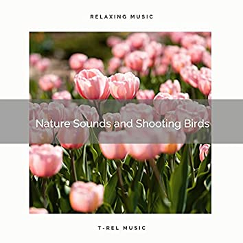 ! ! ! ! ! Nature Sounds and Soothing Birds