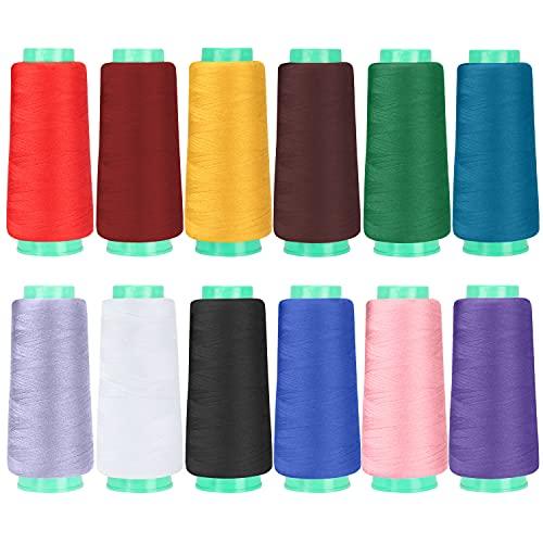 Curtzy Hilos de Coser para Maquina (Pack de 12) 1372 m – 12 Colores Variados Hilo de Coser de Poliéster para Todo Uso – Coser a Mano/Máquina, Colchas, Puntadas y Bordado