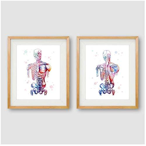 Medical Body Art The Best Amazon Price In Savemoney Es
