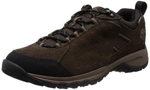 Timberland Translite 2.0 FTP_Tilton Low Leather GTX, Botas de Senderismo Hombre, Dark Brown, 45.5
