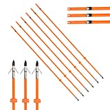 32 inch Archery Fiberglass Bowfishing Arrows with Broadheads and Safty Slides for Compound Bow and Recurve Bow Fishing Hunting Outdoor Shooting