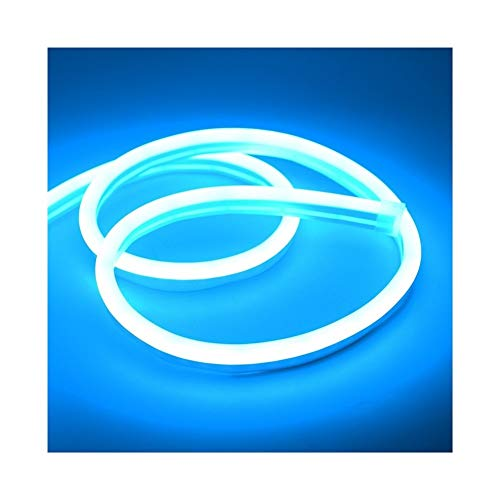 CHUNMA 6mm Reduzca la luz de neón 12V tira LED SMD 2835 120leds / M del tubo flexible de la cuerda a prueba de agua for el bricolaje día de fiesta de la decoración de la Luz (Color : Ice blue)