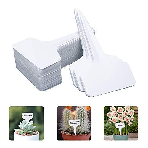 GHJK Pflanzschilder Plastik Pflanzenetiketten Wetterfest Pflanzensteckerfür drinnen draußen Gewächshaus T-Typ 6 x 10 cm 100 Stück weiß