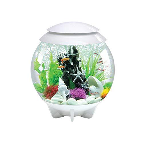 DUTUI Stilles Aquarium Aus Acryl, Kein Wasserwechsel Für Das Wohnzimmer Im Haushalt, Kleines Aquarium, Ökologische Mikrolandschaft, Geeignet Für Fische,Weiß