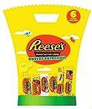 Reese's Mantequilla de cacahuete 6 piezas caja de regalo de Pascua 266g