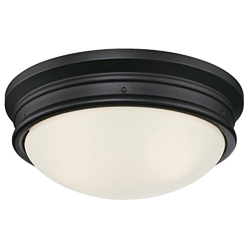 Westinghouse 6324100 Meadowbrook Indoor Flush-Mount Ceiling Fixture, Matte Black Finish with Frosted Glass, Two Light