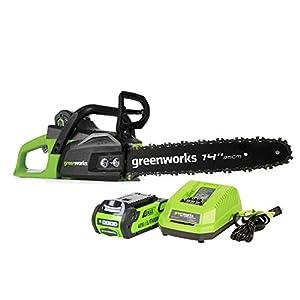 Greenworks CS40L210 review