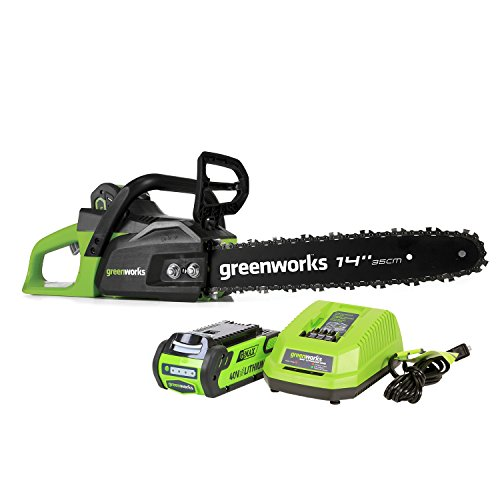 Greenworks 40V 14 inch Cordless Chainsaw, 2.0 AH Battery...