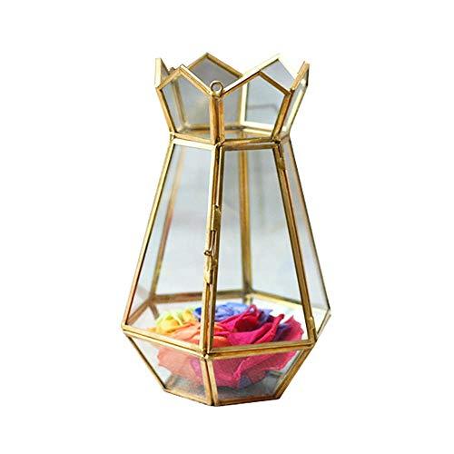 Yinglihua Terrarium, Fougères de lucht, geometrie van de glazen wand, metaal, decoratieve doos, kristallen bollen, glas, terrarium, plant