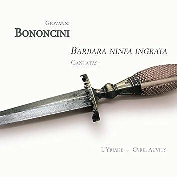 Bononcini: Barbara ninfa ingrata (Cantatas)