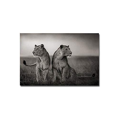 Dos Leones Ojo a la Distancia Poster Wild Freedom AnimalCanvas Painting Art Picture Decoración del hogar para el dormitorio-60x100cm Sin Marco