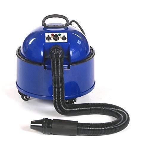 Pedigroom Profesional de aseo para perros secador de pelo secador de pelo blaster azul 2800W