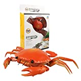 Toyvian RC Crab Toy Electric Crab Animal Remote Control Car Vehicle RC Animal Fake Sea Creatures Model Funny Prank Toy for Kids Birthday Gift Red