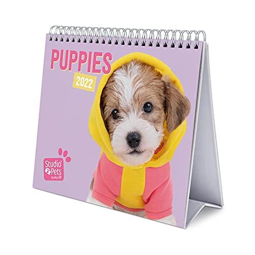 Calendario da Tavolo 2022 Studio Pets Dogs - Calendario da scrivania 2022 - Calendario...