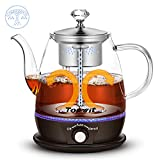 Topwit Electric Kettle, Electric Tea Kettle with New Tea-brewing Method, Keep Warm and Dual Boiling Modes...
