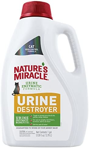 Top 10 Best natures miracle carpet shampoo Reviews