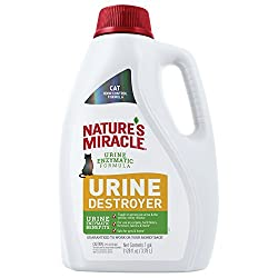 Top 5 Best Cat Urine Removers 2020