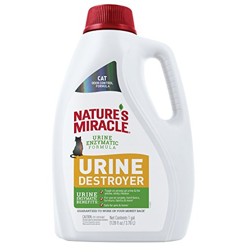 Nature's Miracle Cat Urine Destroyer, 1 Gallon