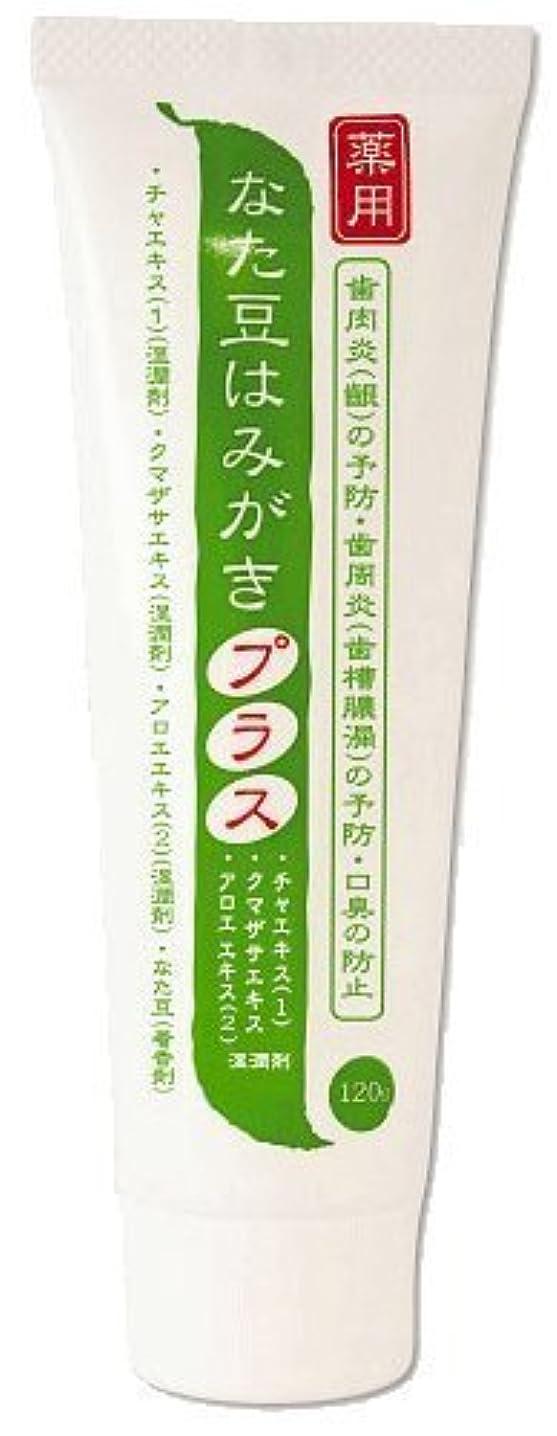 大きさほぼ事前に薬用 なた豆はみがきプラス 医薬部外品 120g×2本セット