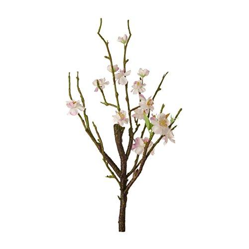 ASA Fleurs de Cerisier 40,5 cm