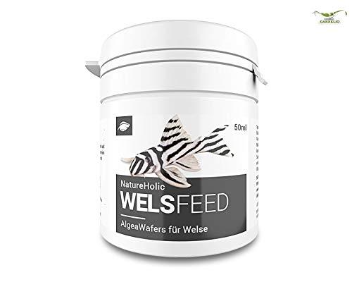 NatureHolic Welsfeed - Welsfutter - Futter für Fische im Aquarium – Welse – 50 ml
