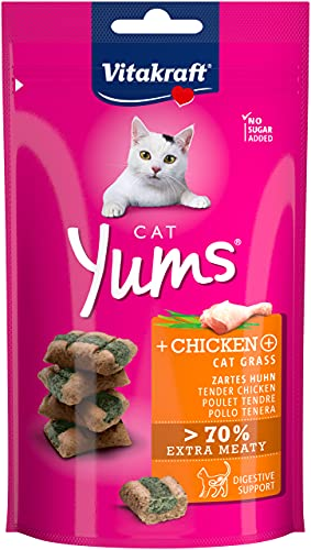 Vitakraft Cat YUMS - Poulet & Herbe à Chat - 40 g
