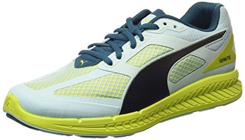 Puma Ignite Mesh Zapatillas de Running Mujer