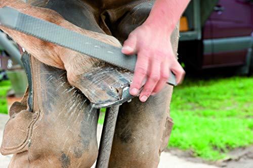 Pferd 13180350 Hufhobel 3515 350 - 7